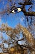 4elza zima złym okiem patrzy...