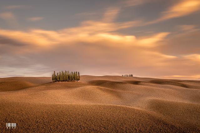 Tuscany Ryszard Lomnicki #309610