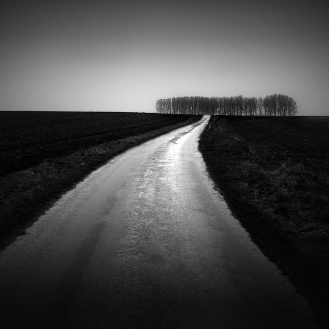 Photographer:Demaret Didier #205843