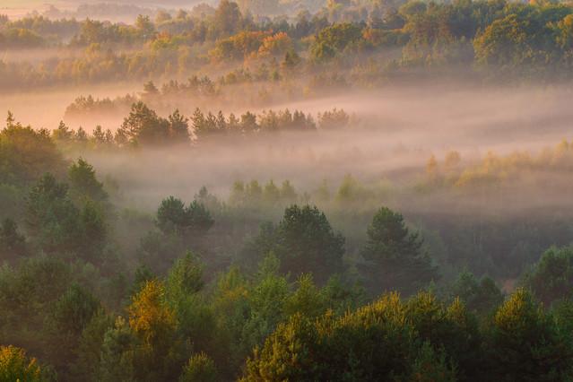 Poranek na jurze Poranne mgły które zwiastują wczesną jesień.