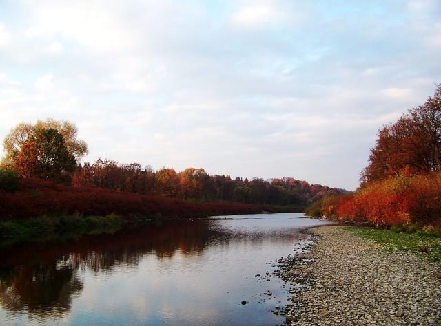 Rzeka Wisła Piotr Borzucki #150641