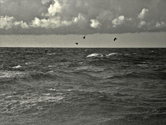 Sztorm na Morzu Północnym Monika Kloc #300180