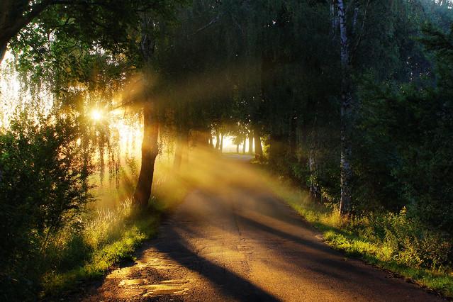 Poranne mgły #17 Sławek Rezerwa #326794