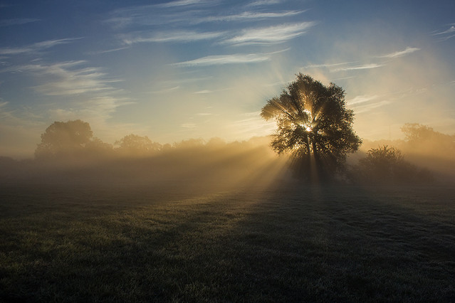 Bo światło jest wszystkim... Pawel Plucinski #281651