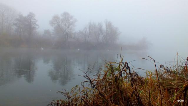 Nad rzeką Picasa #311848