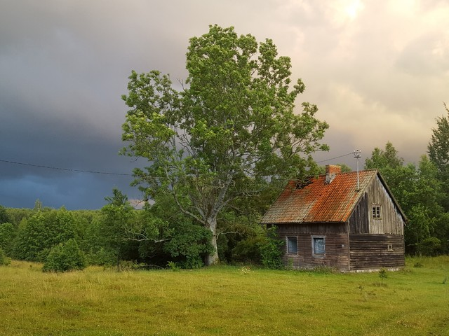 MariuszFotografia #314130