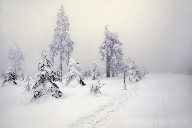 Aneta Konik Zima ciągle trzyma