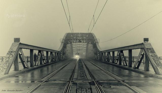 Kraków - most Piłsudskiego Renata Barska #312485