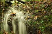 dingo4kris wodospadzik