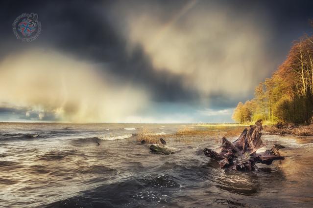 Łowcy świtów kontra front atmosferyczny Tomasz Przywecki #306015