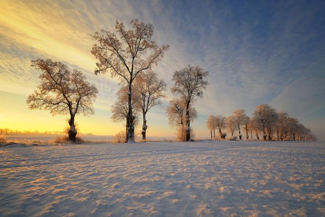 Zima. Pawel Bozek #268068
