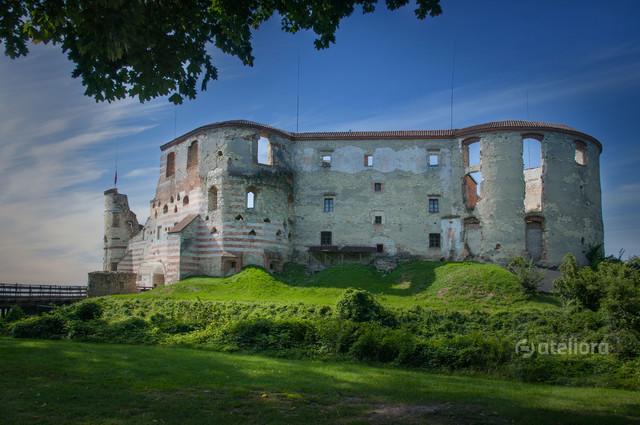 Zamek w Janowcu nad Wisłą Zbigniew Kapusta #337575