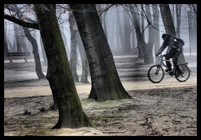 ... Park Pole Mokotowskie Marzena Wasilewska #153384
