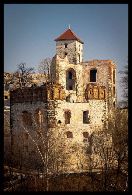 Ruiny zamku ''Tenczyn'' : Marcin STIEBAL #303226