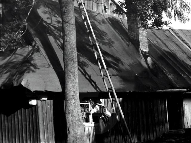 Drabina do Nieba... Ryszard Staniec #153379