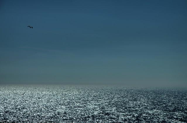 Aldona Nowakowska Oczarowało mnie niebo i morze