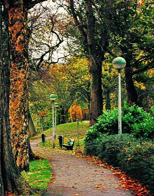 ...jesień się zaczyna Zdjęcie celowo ''ziarniste'' Monika Kloc