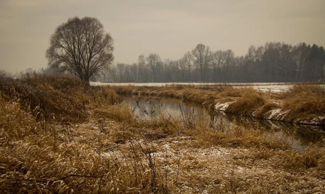 Krajobraz styczniowy. : Marcin STIEBAL #287650