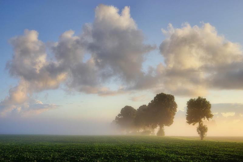 Sławek Rezerwa|Poranne mgły #6