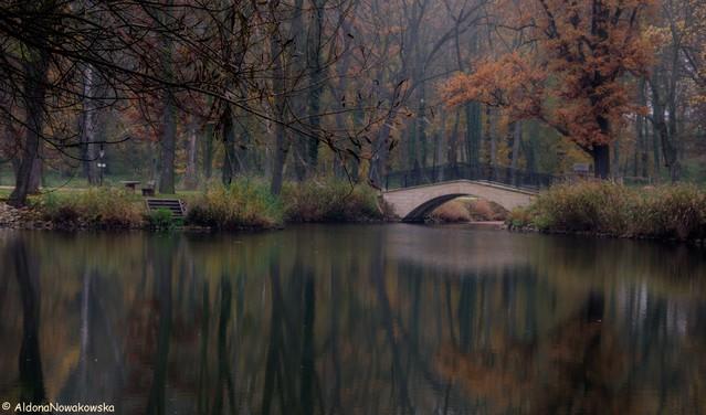 Aldona Nowakowska Park przy pałacu w Krotoszycach