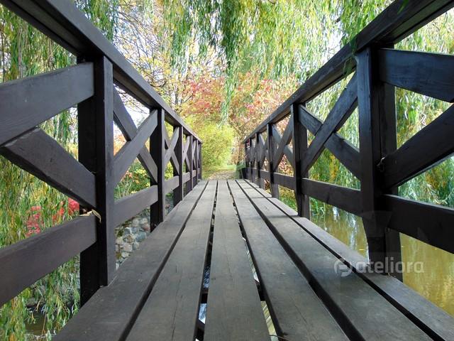 Parkowy mostek gizela #327711