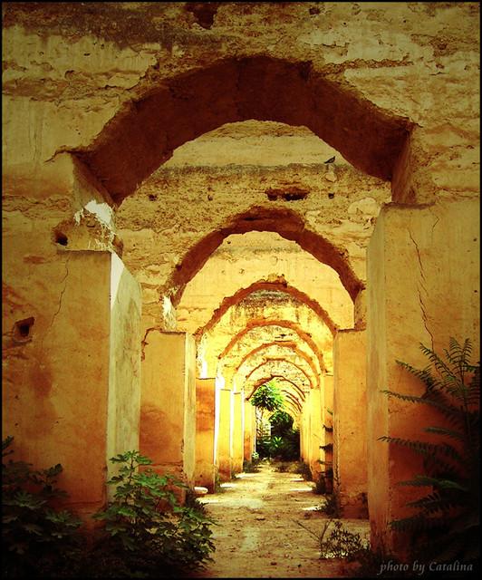 Kasia Szeja Meknes - Maroko