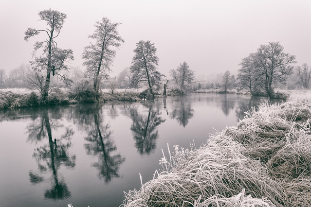 Frost on The River Gwda. Krzysztof Tollas #307016