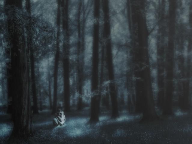PRZEMEK KIJOWSKI -AUTOR blue forest
