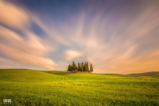 Tuscany Ryszard Lomnicki #310284