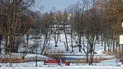 Picasa Łódź nad stawem