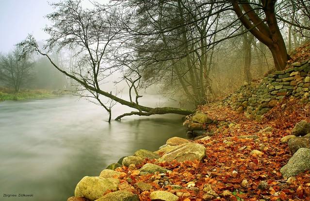 Jesienne mgły Dolina Brdy Zbyszek1955 #336467