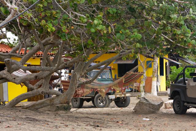 Kup pan hamak. Wyspa Margarita - Wenezuela 2011. Renata Schmidt