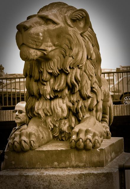 obia Dwa lwy