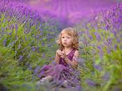 Pawel Prus|Lavender Dreams