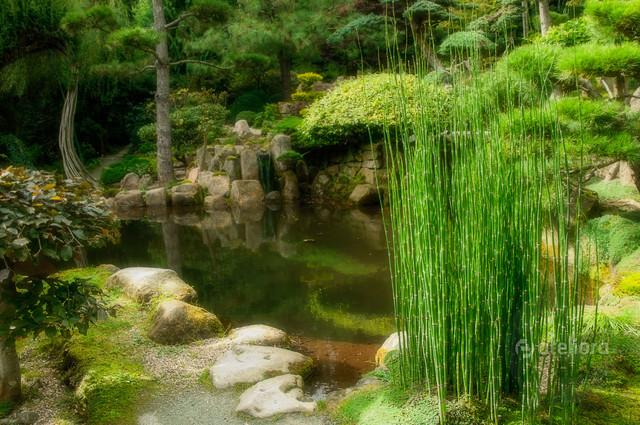 Japoński ogród, Jarków Zbigniew Kapusta #327761