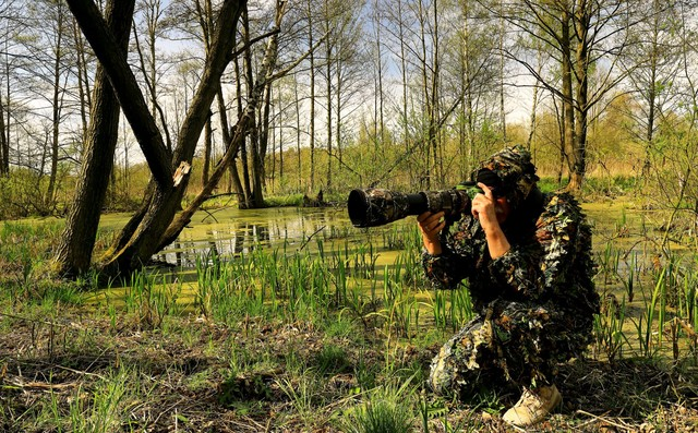 W trakcie polowania na .... Puszcza Notecka Zbyszek1955 #336609