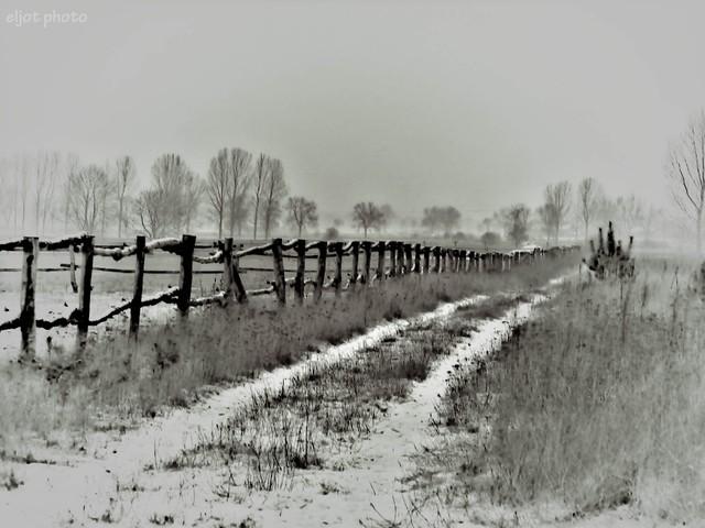 obia Zima w polu