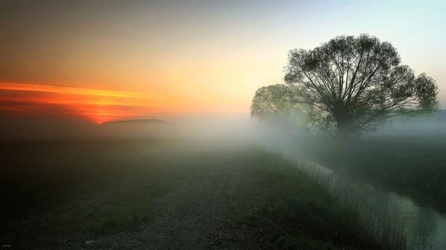 Gdy dzień się budzi.... Nadnoteckie Łęgi Zbyszek1955 #336408