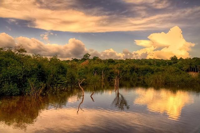 Amazonia.. Zbigniew Stanislawski #128891